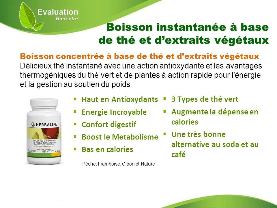 Boisson instantanée à base de thé et dextraits végétaux Haut en Antioxydants Energie Incroyable Confort digestif Boost le Metabolisme Bas en calories