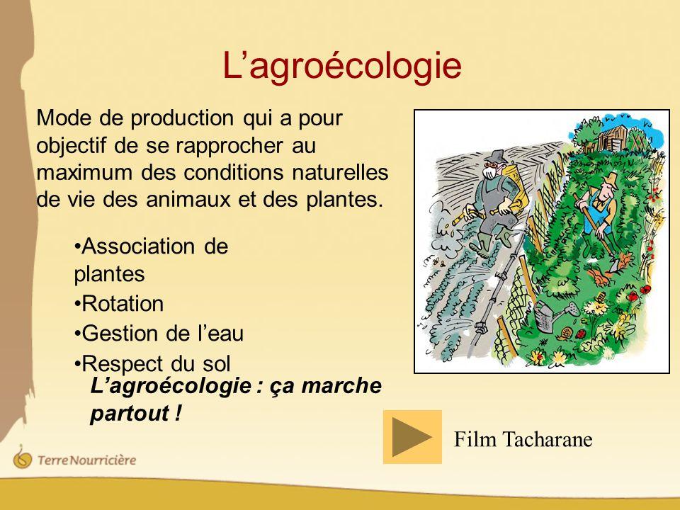 Lagroécologie Mode de production qui a pour objectif de se rapprocher au maximum des conditions naturelles de vie des animaux et des plantes.