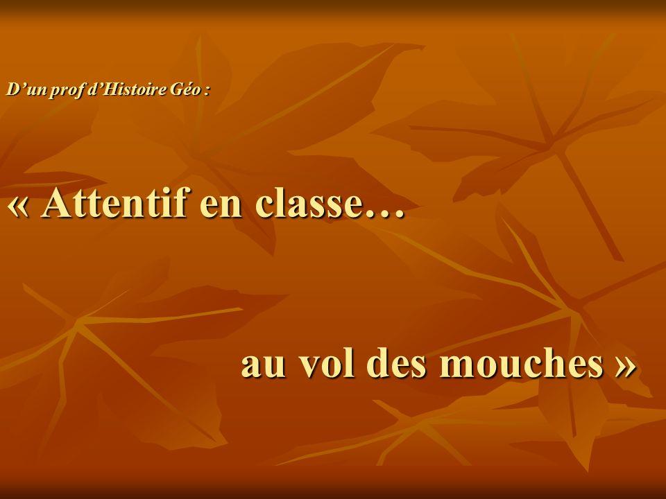 Dun prof dHistoire Géo : « Attentif en classe… au vol des mouches »
