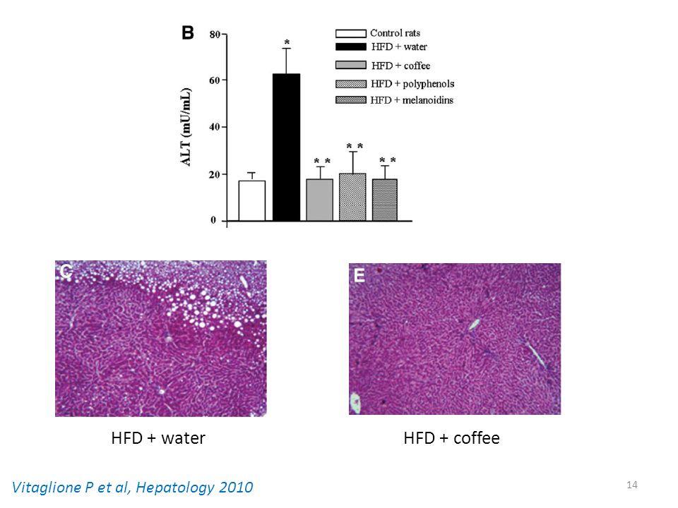 14 Vitaglione P et al, Hepatology 2010 HFD + water HFD + coffee