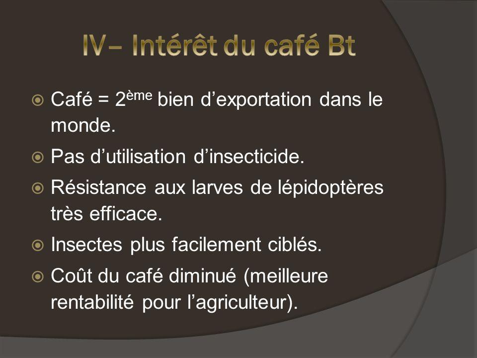 Café = 2 ème bien dexportation dans le monde.Pas dutilisation dinsecticide.