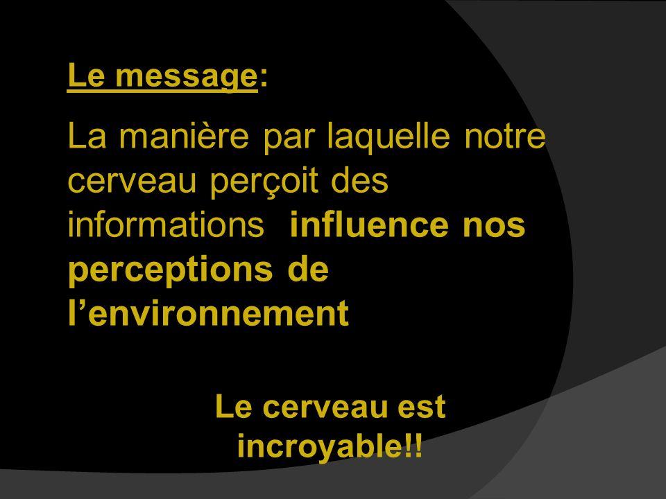 Le message: La manière par laquelle notre cerveau perçoit des informations influence nos perceptions de lenvironnement Le cerveau est incroyable!!