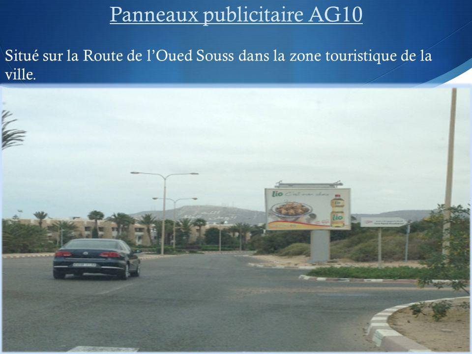 Panneaux publicitaire AG10 Situé sur la Route de lOued Souss dans la zone touristique de la ville.