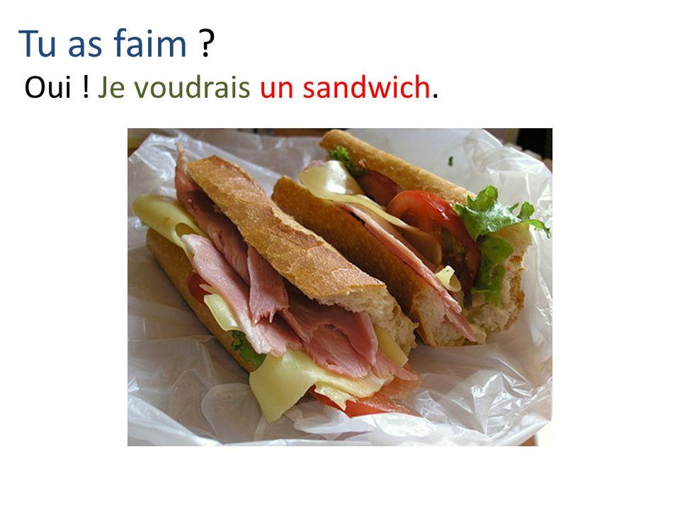 Tu as faim ? Oui ! Je voudrais un sandwich.