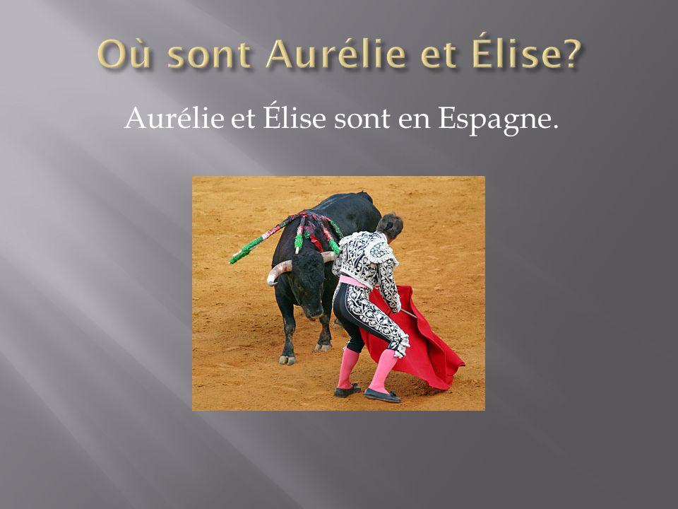 Aurélie et Élise sont en Espagne.