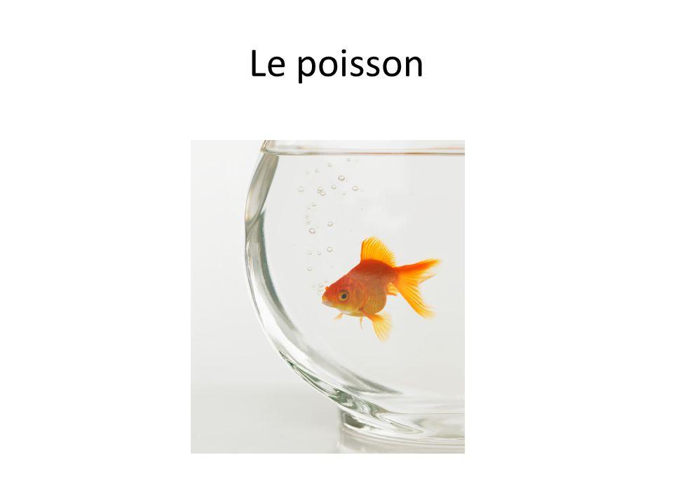 Le poisson