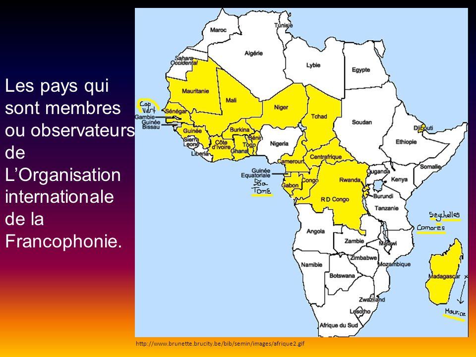 Les pays qui sont membres ou observateurs de LOrganisation internationale de la Francophonie. http://www.brunette.brucity.be/bib/semin/images/afrique2