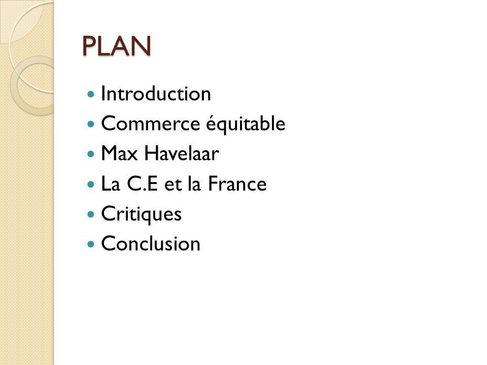 Conclusion Est-ce que le C.E a un avenir.