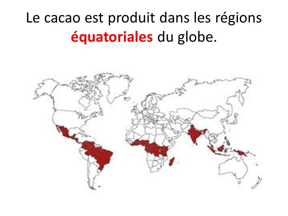 Le cacao est produit dans les régions équatoriales du globe.