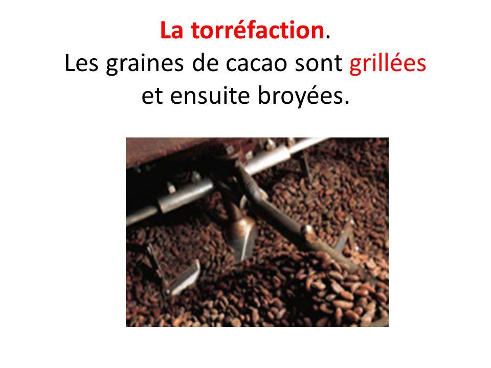 La torréfaction. Les graines de cacao sont grillées et ensuite broyées.