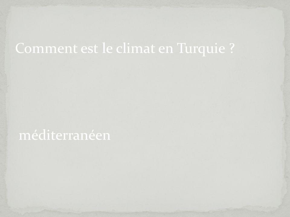 Comment est le climat en Turquie ? méditerranéen