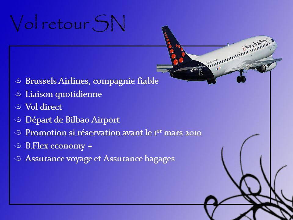 Vol retour SN Brussels Airlines, compagnie fiable Liaison quotidienne Vol direct Départ de Bilbao Airport Promotion si réservation avant le 1 er mars