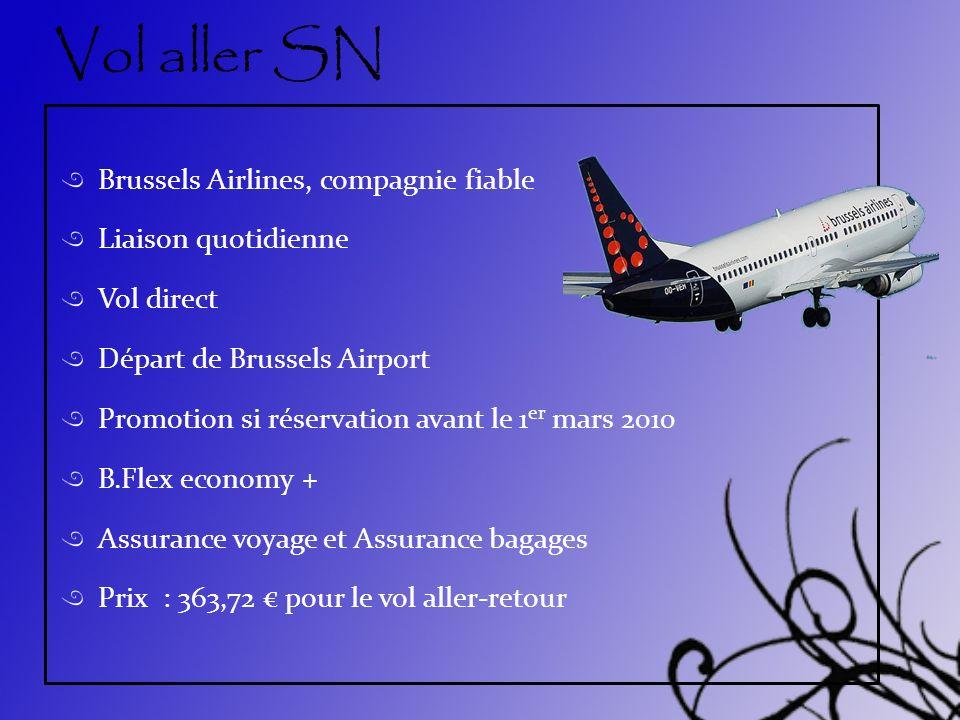 Vol aller SN Brussels Airlines, compagnie fiable Liaison quotidienne Vol direct Départ de Brussels Airport Promotion si réservation avant le 1 er mars