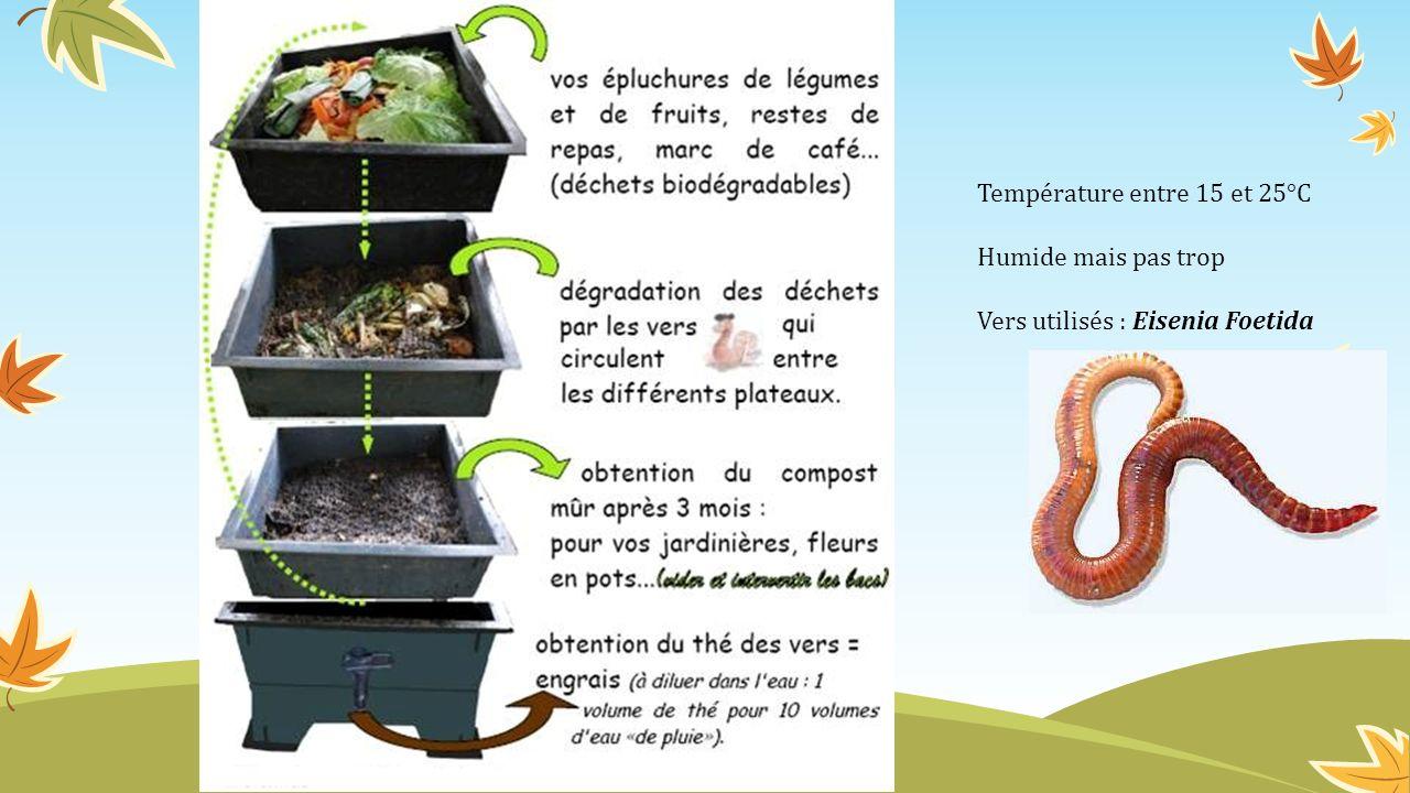 Température entre 15 et 25°C Humide mais pas trop Vers utilisés : Eisenia Foetida