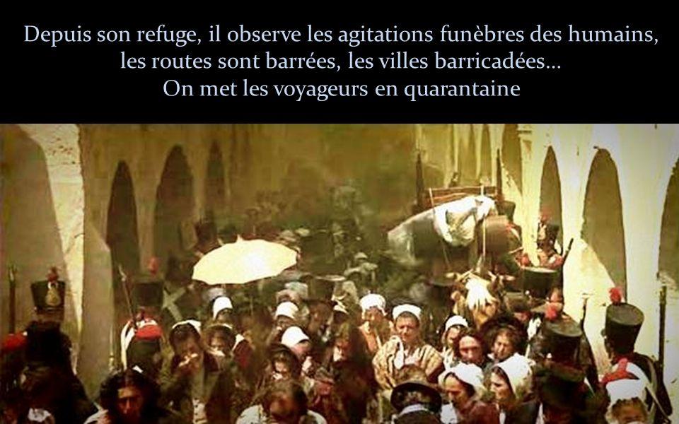 Depuis son refuge, il observe les agitations funèbres des humains, les routes sont barrées, les villes barricadées… On met les voyageurs en quarantaine