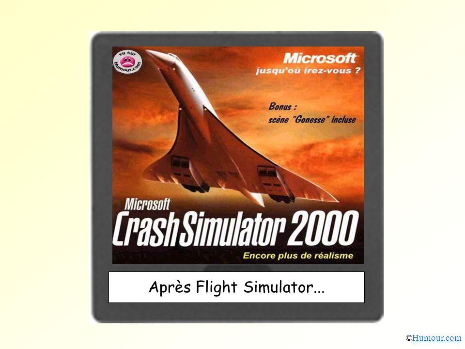 Après Flight Simulator... ©Humour.comHumour.com