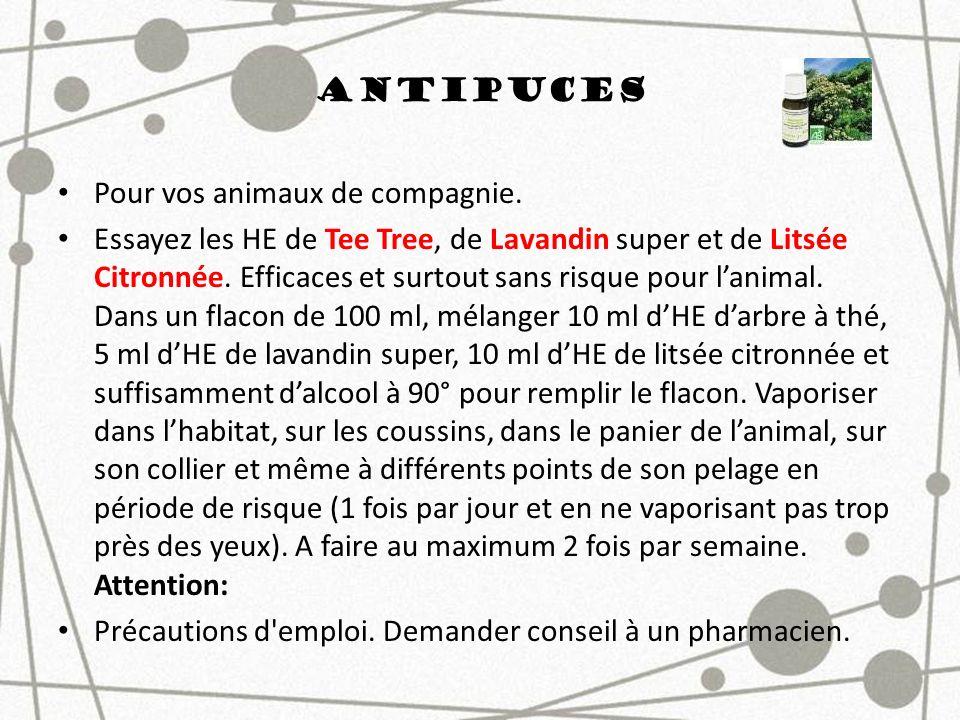 Antipuces Pour vos animaux de compagnie. Essayez les HE de Tee Tree, de Lavandin super et de Litsée Citronnée. Efficaces et surtout sans risque pour l