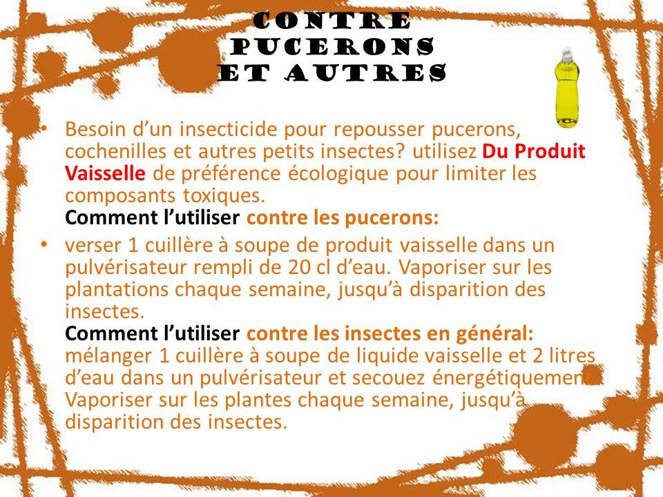 Contre Pucerons Et Autres Besoin dun insecticide pour repousser pucerons, cochenilles et autres petits insectes? utilisez Du Produit Vaisselle de préf