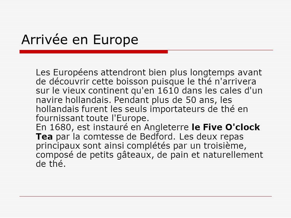 Arrivée en Europe Les Européens attendront bien plus longtemps avant de découvrir cette boisson puisque le thé n arrivera sur le vieux continent qu en 1610 dans les cales d un navire hollandais.