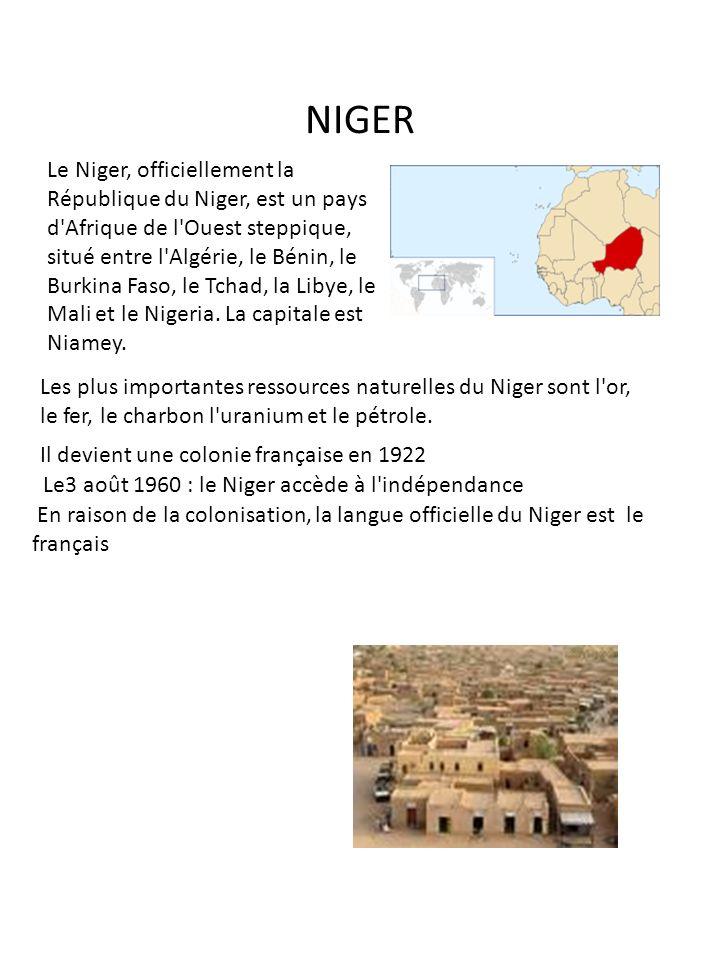 NIGER Le Niger, officiellement la République du Niger, est un pays d'Afrique de l'Ouest steppique, situé entre l'Algérie, le Bénin, le Burkina Faso, l