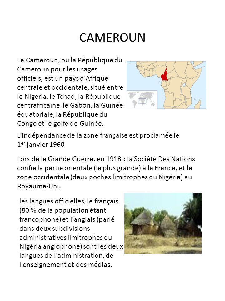 CAMEROUN Le Cameroun, ou la République du Cameroun pour les usages officiels, est un pays d'Afrique centrale et occidentale, situé entre le Nigeria, l