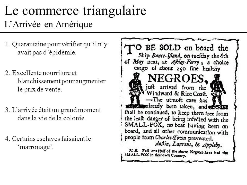 Le commerce triangulaire LArrivée en Amérique 1.