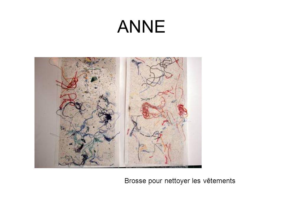 ANNE Brosse pour nettoyer les vêtements