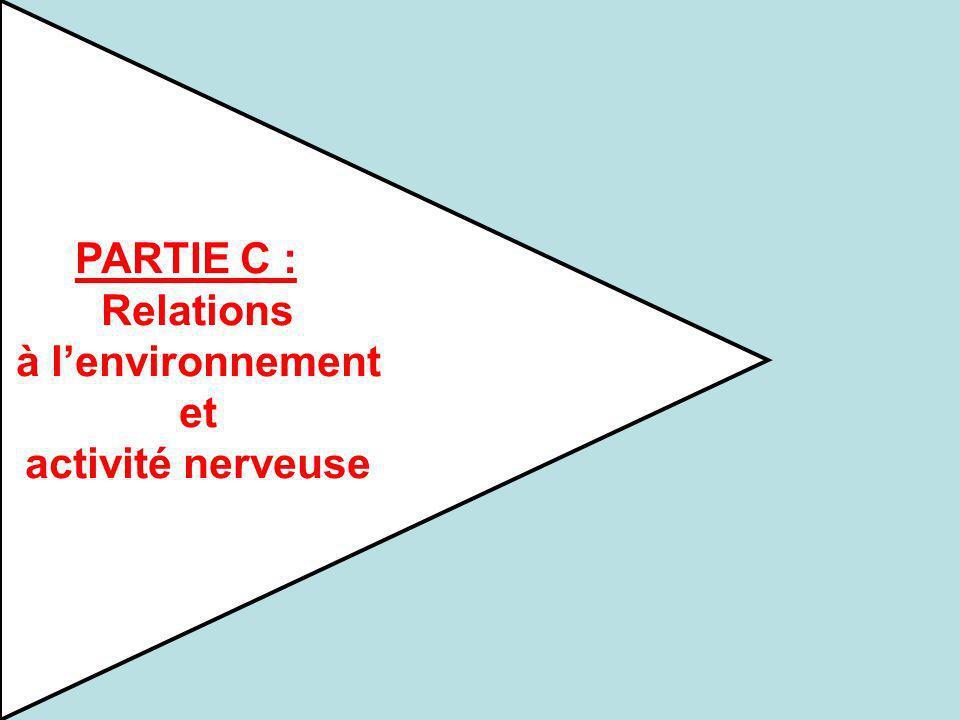 PARTIE C : Relations à lenvironnement et activité nerveuse