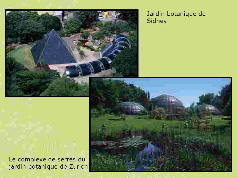 Jardin botanique de Sidney Le complexe de serres du jardin botanique de Zurich