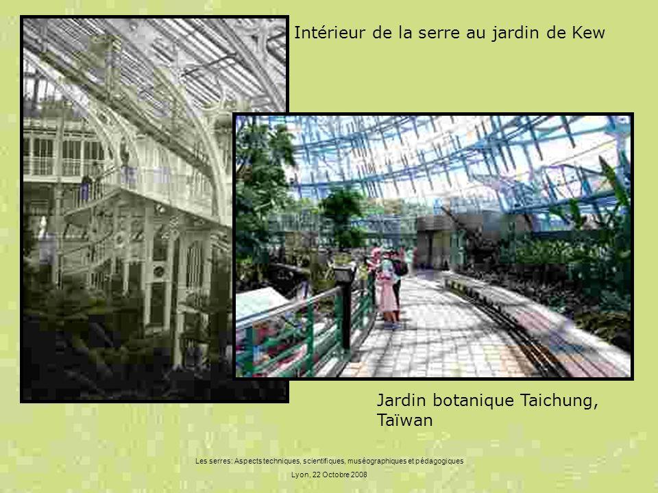 Les serres: Aspects techniques, scientifiques, muséographiques et pédagogiques Lyon, 22 Octobre 2008 Intérieur de la serre au jardin de Kew Jardin bot