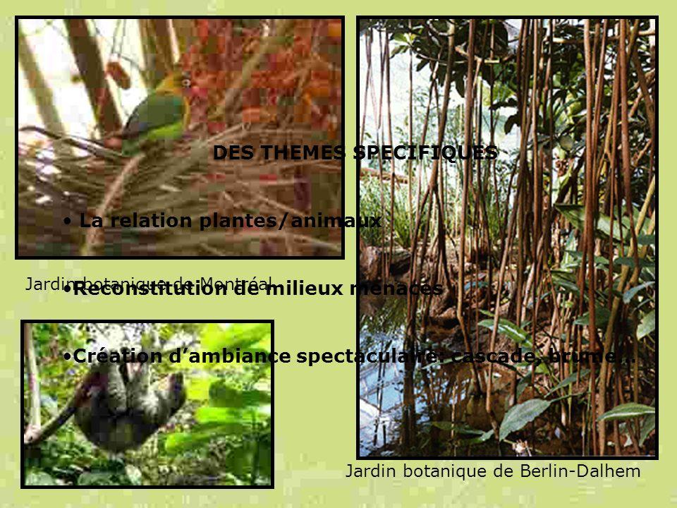 DES THEMES SPECIFIQUES La relation plantes/animaux Reconstitution de milieux menacés Création dambiance spectaculaire: cascade, brume… Jardin botaniqu
