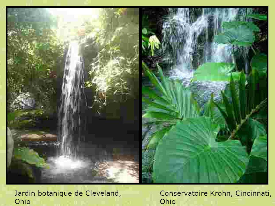 Jardin botanique de Cleveland, Ohio Conservatoire Krohn, Cincinnati, Ohio
