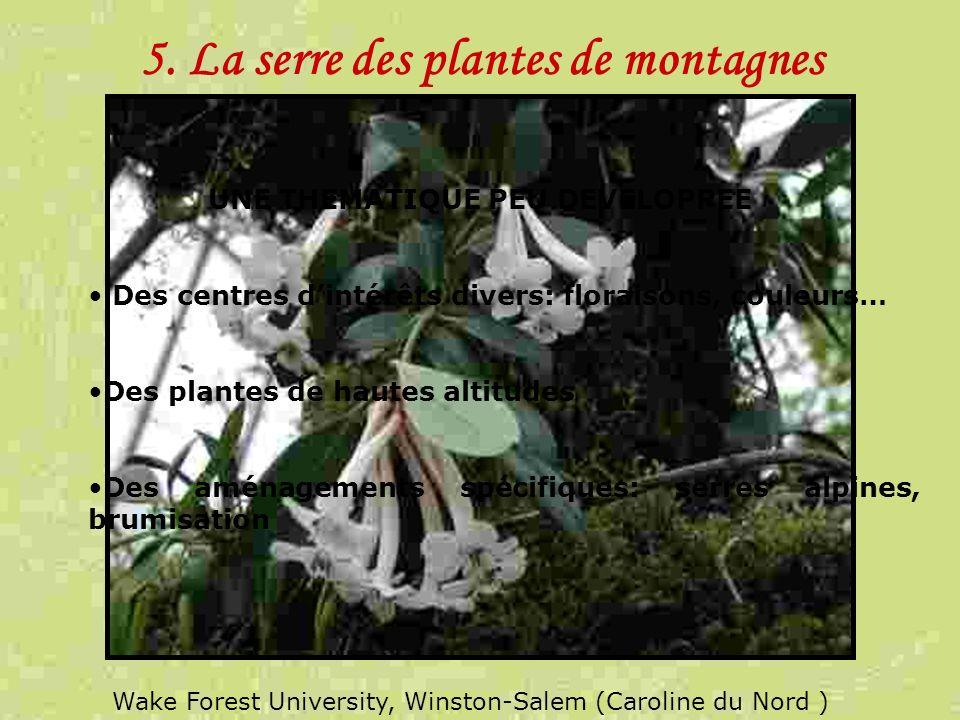 5. La serre des plantes de montagnes UNE THEMATIQUE PEU DEVELOPPEE Des centres dintérêts divers: floraisons, couleurs… Des plantes de hautes altitudes