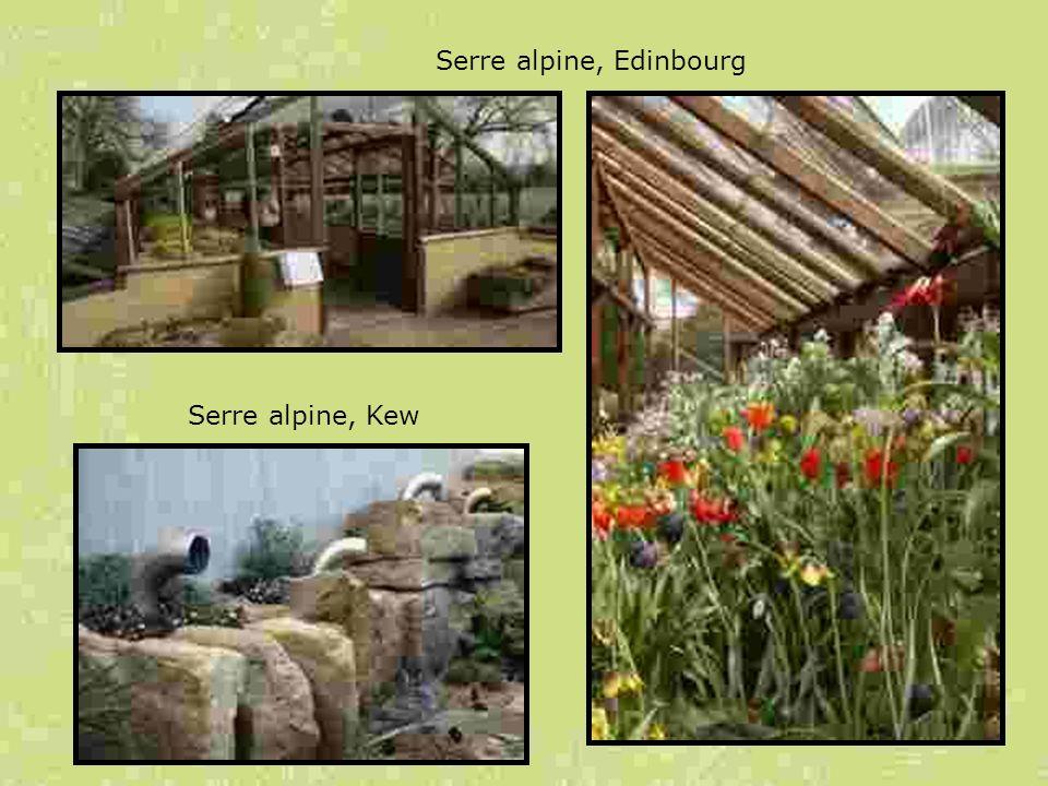 Serre alpine, Edinbourg Serre alpine, Kew