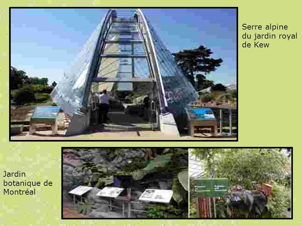 Serre alpine du jardin royal de Kew Jardin botanique de Montréal