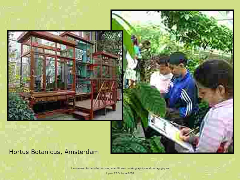 Les serres: Aspects techniques, scientifiques, muséographiques et pédagogiques Lyon, 22 Octobre 2008 Hortus Botanicus, Amsterdam