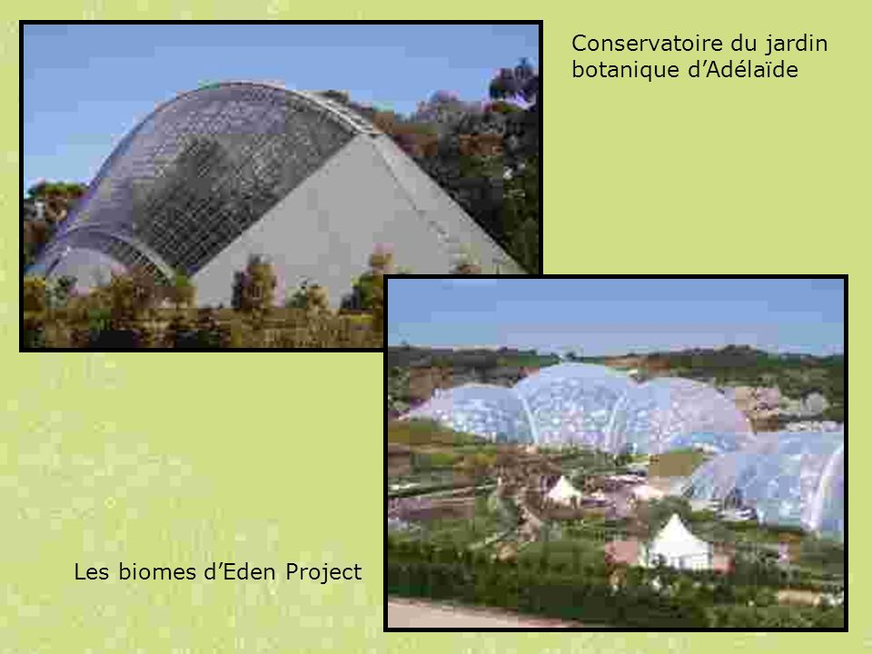Les serres: Aspects techniques, scientifiques, muséographiques et pédagogiques Lyon, 22 Octobre 2008 6.