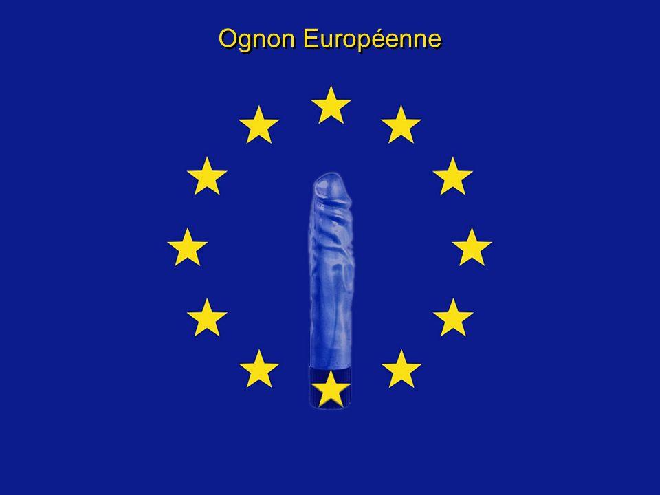Ognon Européenne