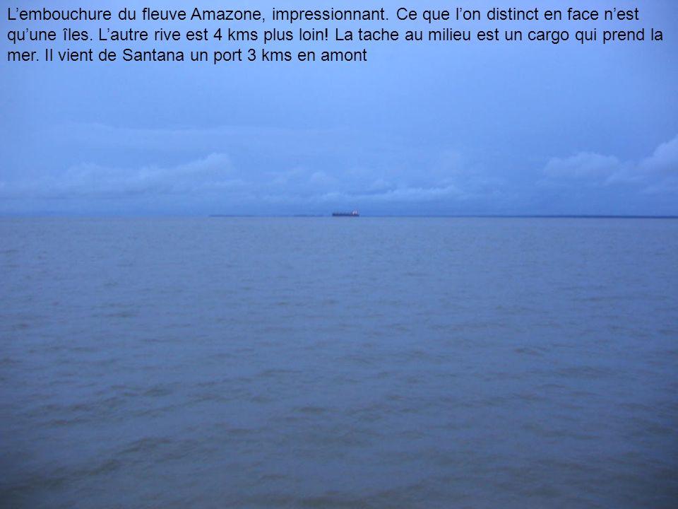 Lembouchure du fleuve Amazone, impressionnant. Ce que lon distinct en face nest quune îles. Lautre rive est 4 kms plus loin! La tache au milieu est un