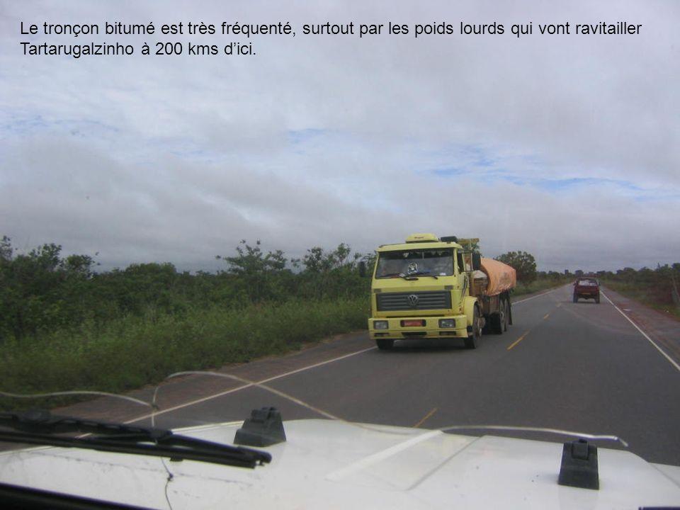 Le tronçon bitumé est très fréquenté, surtout par les poids lourds qui vont ravitailler Tartarugalzinho à 200 kms dici.