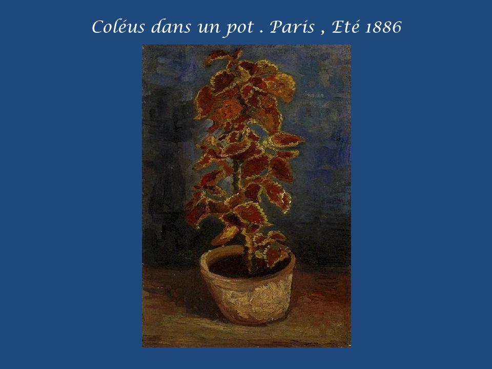 Chrysanthèmes et Fleurs sauvages. Paris, Automne 1887
