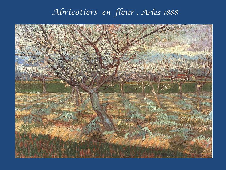 Abricotiers en fleur. Arles 1888