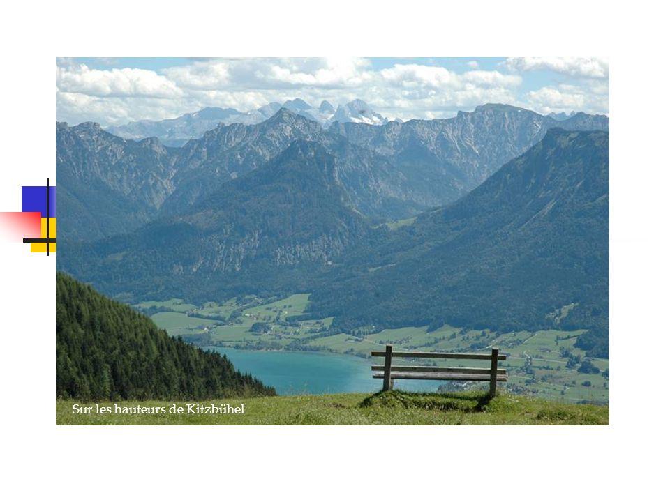 Sur les hauteurs de Kitzbühel