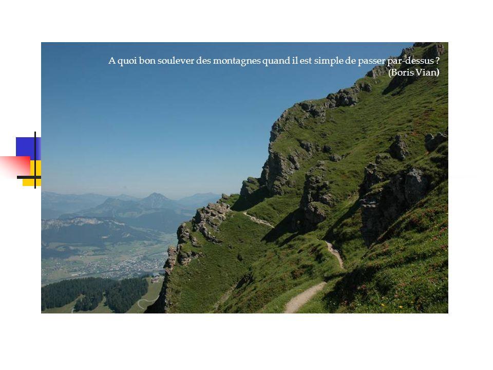A quoi bon soulever des montagnes quand il est simple de passer par-dessus (Boris Vian)