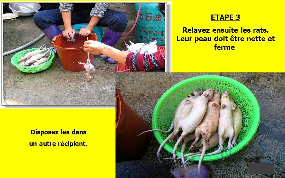ETAPE 2 Pour éliminer le résidu de petits poils et raffermir la peau, passez vos rats un par un au chalumeau. Cela vous donnera par ailleurs, un goût