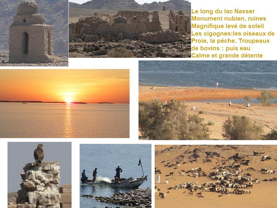 Voici la montagne créée pour Recevoir les temples Abu Simbel Dédié à Ramses ll et Néfertari. son épouse. Situé face au lac Nasser Au sud de lÉgypte pr