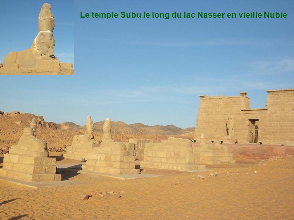 Le long du lac Nasser Monument nubien, ruines Magnifique levé de soleil Les cigognes:les oiseaux de Proie, la pêche. Troupeaux de bovins : puis eau Ca