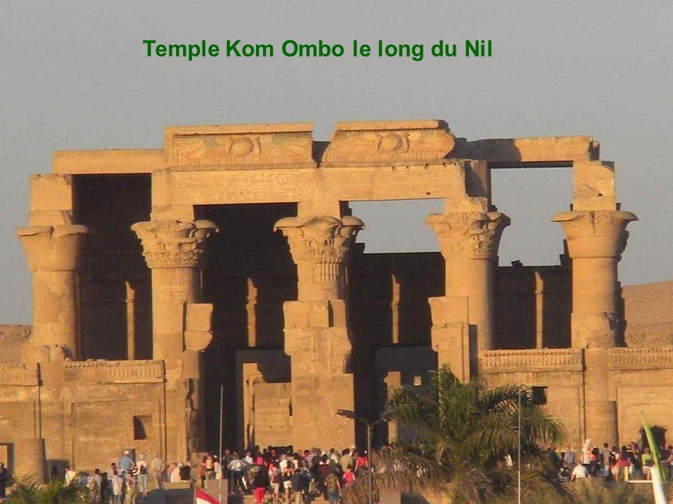 Le dromadaire :service de transport aux pyramides et aux temples