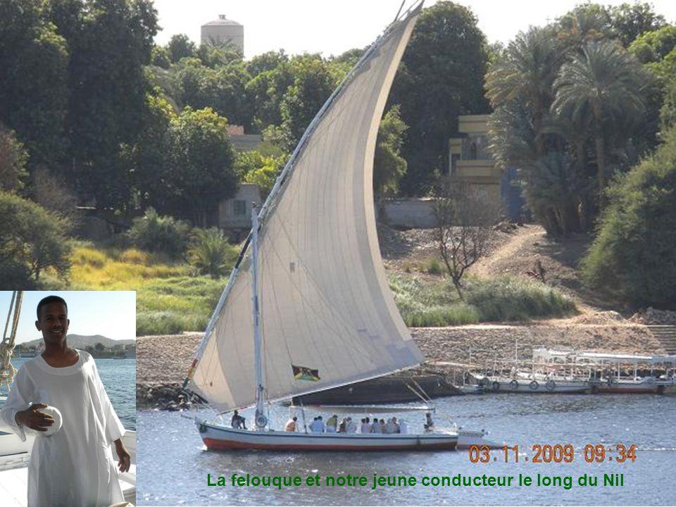 Pilier dun pont décoré traversant le Nil