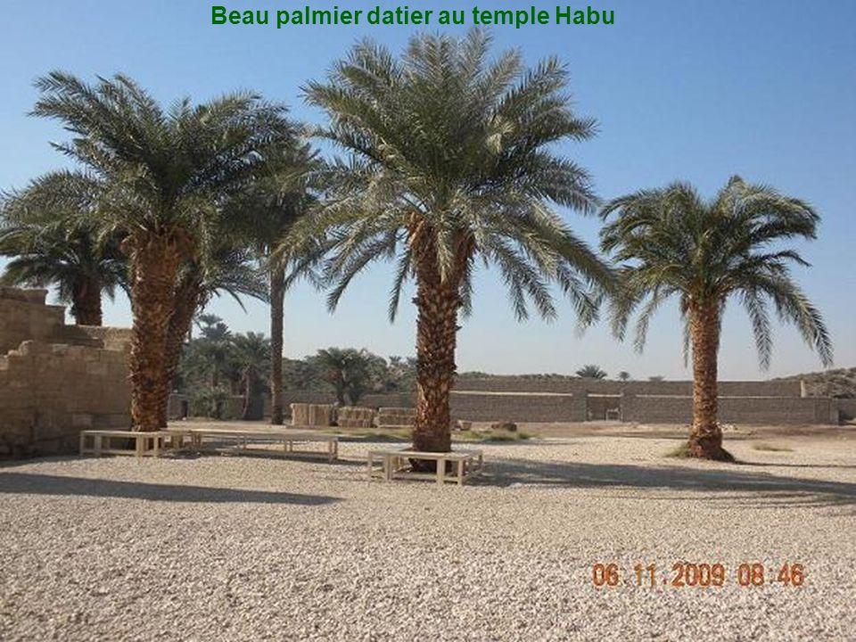 Le temple Habu Le long du Nil